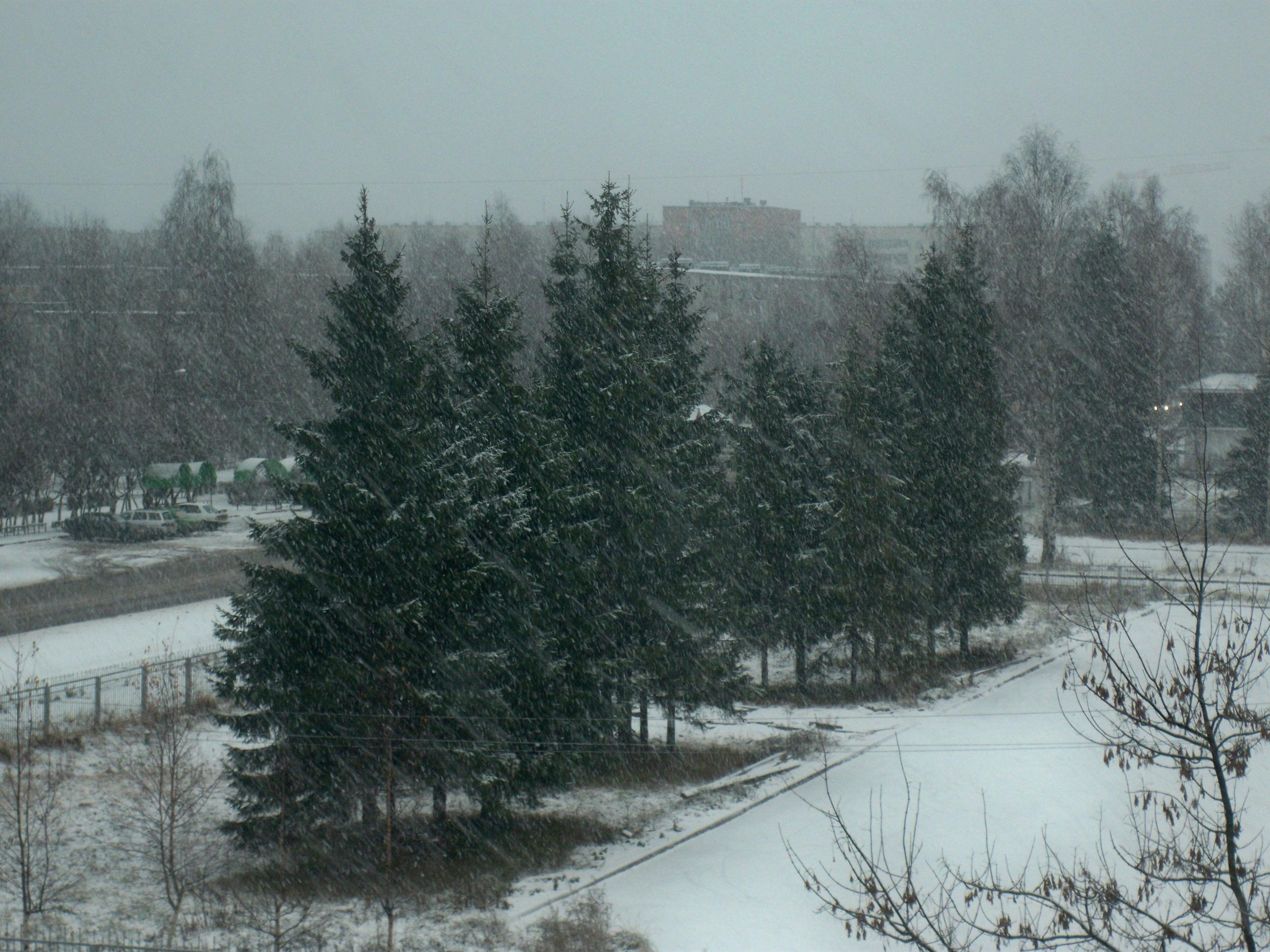 Première neige - Photo Natalia K.